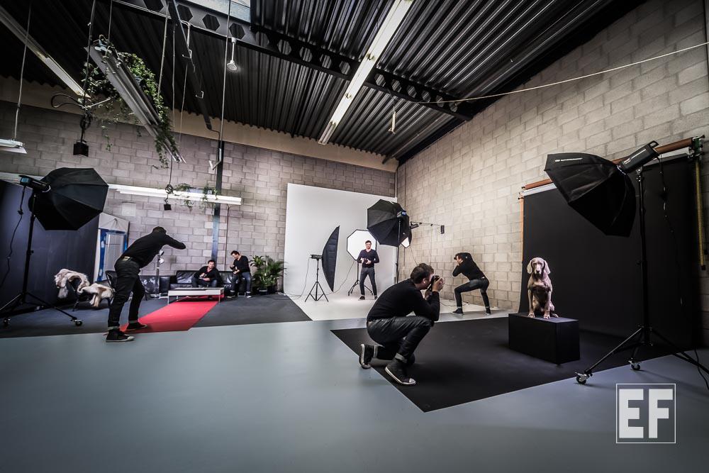 Vragen, Fotostudio, Photostudio,Ebbesfotogragie,Zaandam, Amsterdam, Noord, Holland, Veel gestelde vragen, Portretstudio